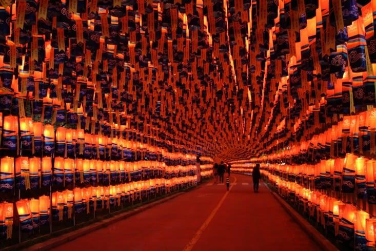Un tunnel de lanternes