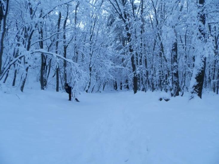 Heureux dans la neige