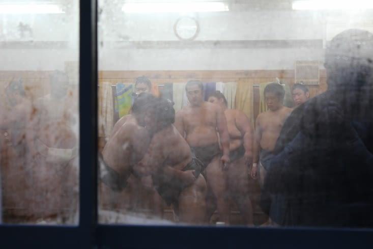 L'entrainement des sumos