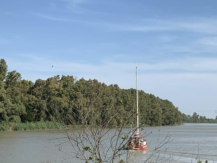 Carolau3 sur le Guadalquivir