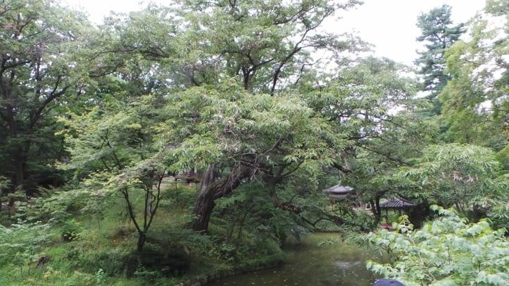 L'île a été pensée pour qu'elle ressemble au territoire coréen .. :)