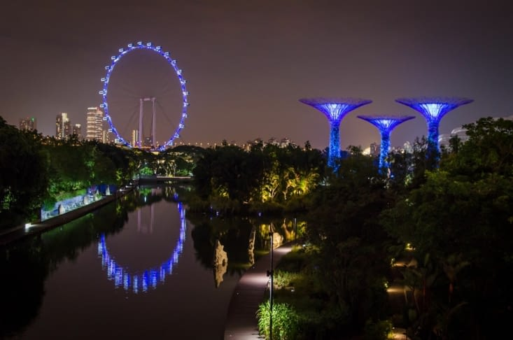 Les supertrees et la Singapore Flyer