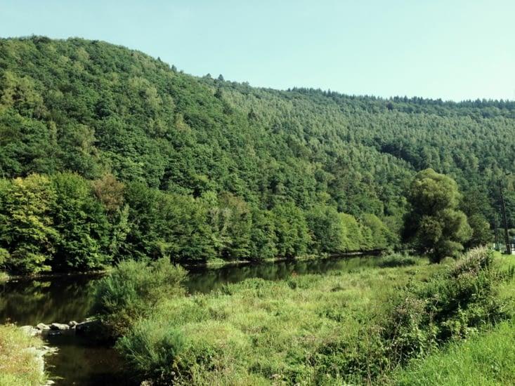 Rivière et verdure : mise au vert parfaite !
