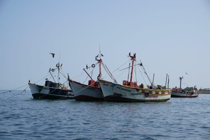 Le port de Paracas