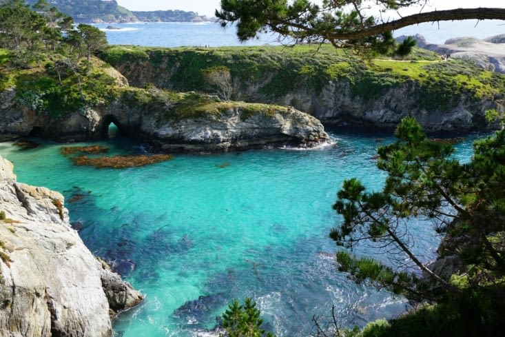 Point Lobos National Park