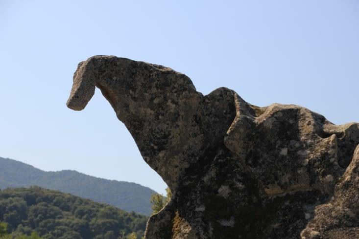 Ajaccio bonifacio france blog trotting - Petit pieds dinosaure ...