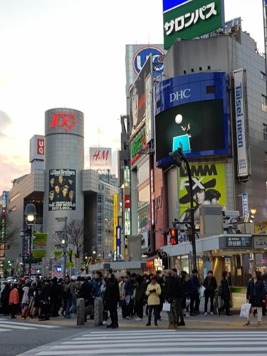 1er jour : grand bain de foule à Shibuya, quartier électrique