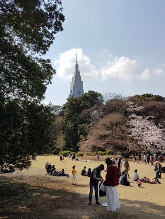 Pause au parc en plein quartier des affaires
