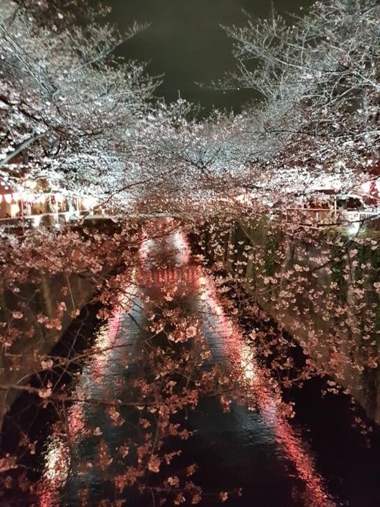 Le canal Saint martin de Tokyo