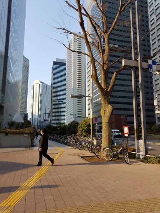 Shinjuku : le quartier des affaires