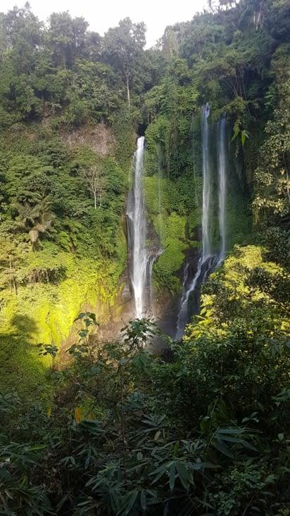 Cascade de Sekumpul : le jardin d'eden