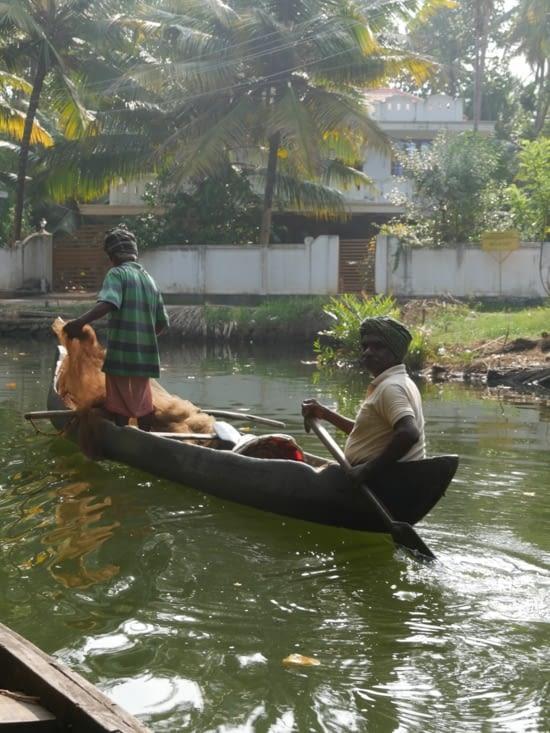 La vie des backwaters