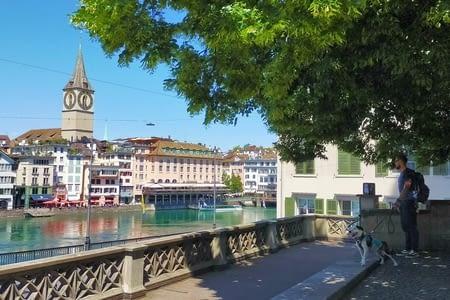 Zurich la dynamich