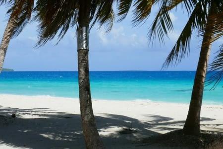 02/02 - TAHITI et ses îles