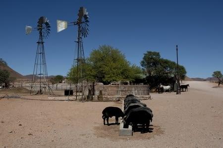 GOBABED / SOLITAIRE / DESERT DU NAMIB / SESRIEM (130 km)