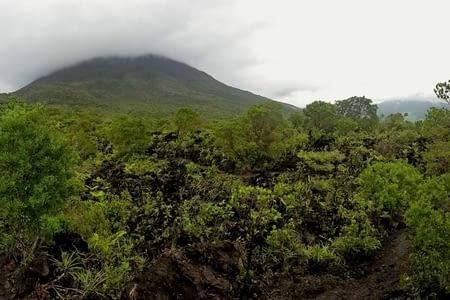 Deschamps, de la forêt et un volcan