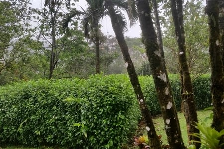 Bajo la lluvia !!