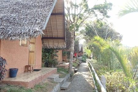réserve spéciale d'Analamazaotra