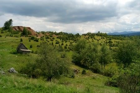 Découverte de partie Serbe-bosniaque