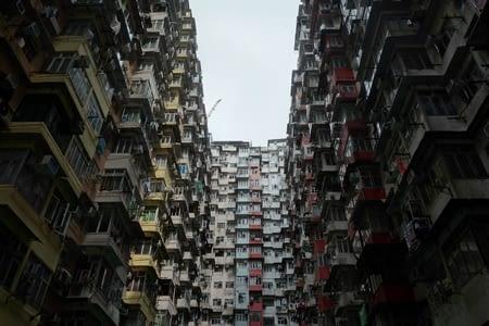 48h chrono dans la jungle de Hong Kong