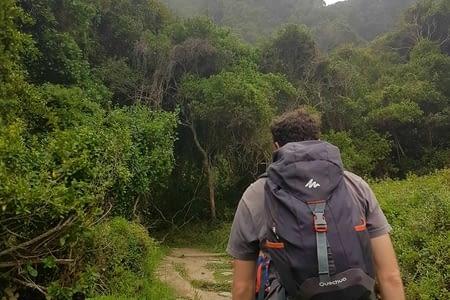 De la Garden road à Addo Elephant